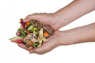 Lebensmittelabfälle vermeiden - so geht's!