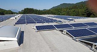 Förderung betrieblicher Photovoltaik-Anlagen