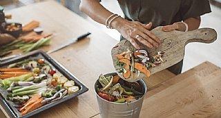 Lebensmittel - zu teuer für den Müll