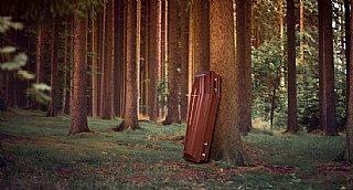 Das Steckenpferd der Moser Holzindustrie: ein Sarg aus heimischen Hölzern, PEFC- und Umweltzeichen-zertifiziert. © Moser Holzindustrie